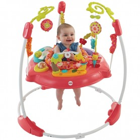 Fisher Price šokliukas Pink Petals Jumperoo