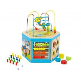 Medinis ergoterapinis žaislas 8in1